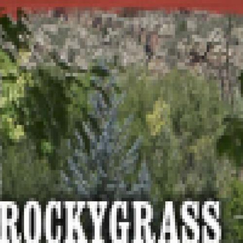Rockygrass Fest